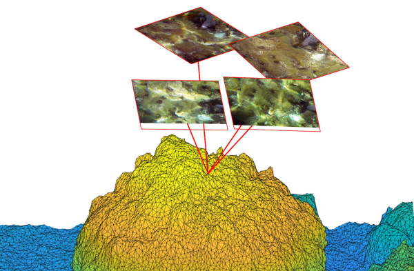 Paper: A Comparison of Deep Learning Methods for Semantic Segmentation of Coral Reef Survey Images