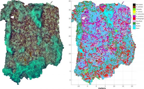 PLOS One 2020 Paper: Automated classification of three-dimensional reconstructions of coral reefs using convolutional neural networks